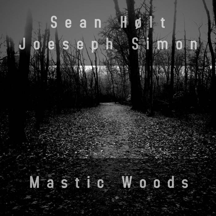 Cover from Sean Holts and Lure of the Unknowns Mastic Woods.